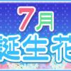 【誕生日が7月の人必見】代表的な7月の2つの誕生花