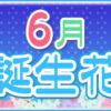 【誕生日が6月の人必見】代表的な6月の3つの誕生花
