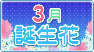 【誕生日が3月の人必見】代表的な3月の3つの誕生花