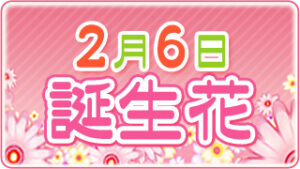 2月6日の誕生花の画像