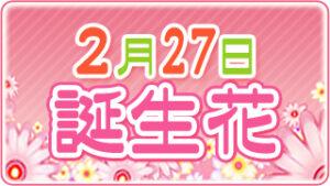 2月27日の誕生花の画像