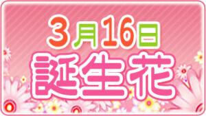 3月16日の誕生花の画像