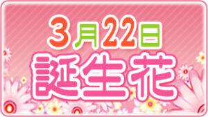 3月22日の誕生花の画像