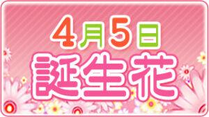 4月5日の誕生花の画像