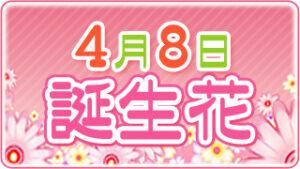 4月8日の誕生花の画像