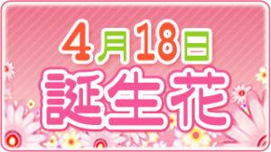 4月18日の誕生花の画像