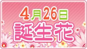 4月26日の誕生花の画像