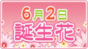 6月2日の誕生花の画像