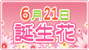 6月21日の誕生花の画像