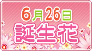 6月26日の誕生花の画像