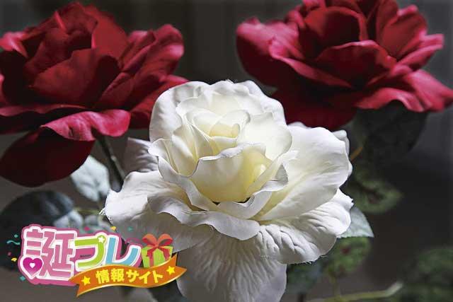 赤い薔薇と白い薔薇の画像