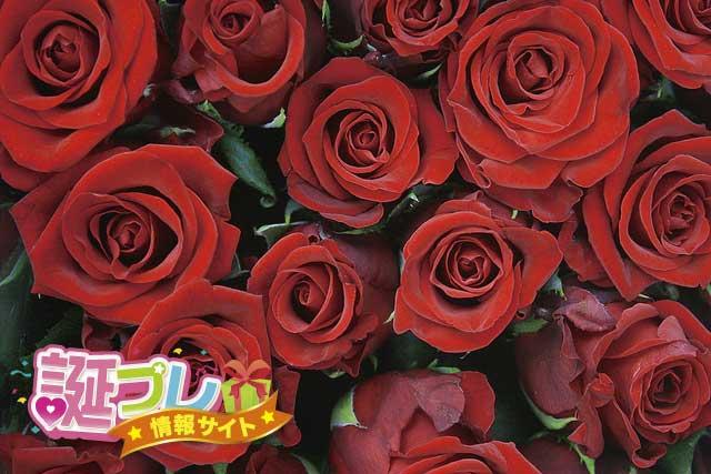 薔薇の本数の画像