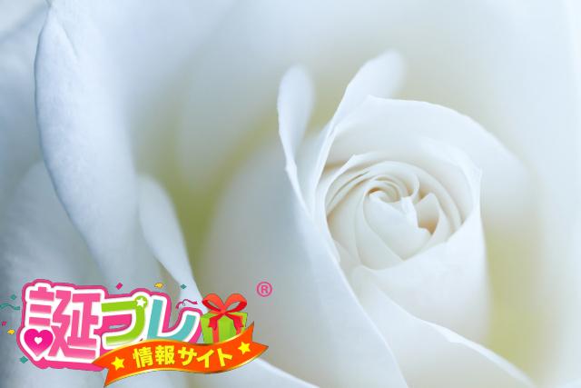 白い薔薇を父にプレゼント