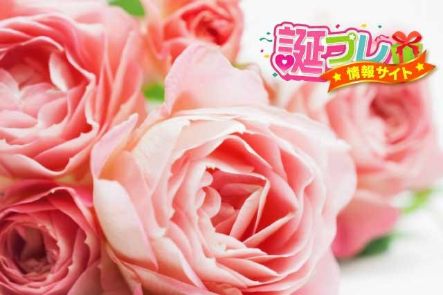26本のピンク色のバラの花束の画像