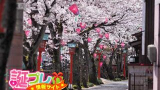 【誕生日体験談5】城崎温泉で娘のサプライズ誕生日祝い