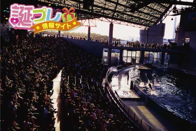 八景島シーパラダイスのショーの画像