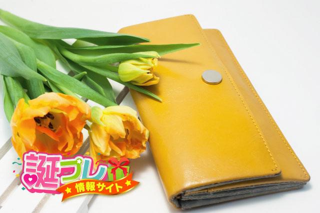 黄色の長財布の画像