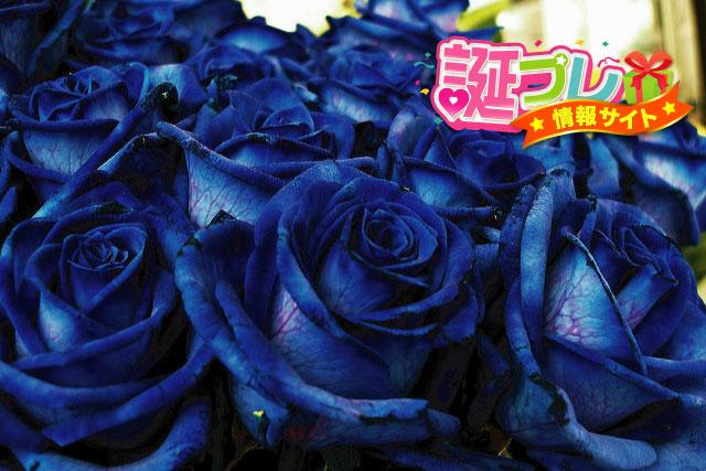 青い薔薇の画像
