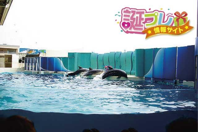 江ノ島水族館の画像