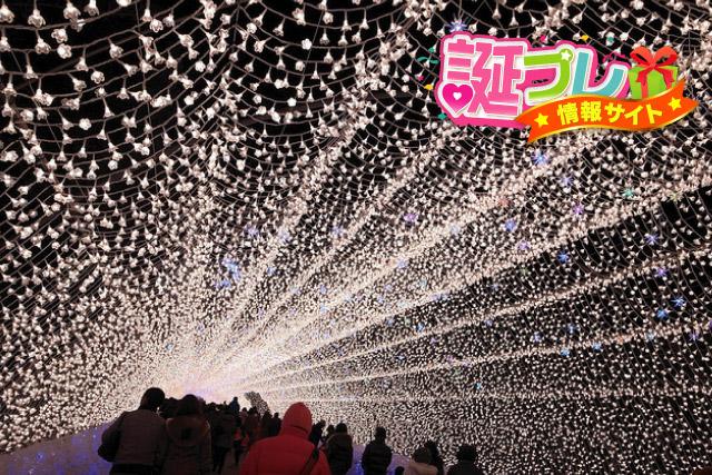 華回廊(光のトンネル)の画像