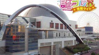 名古屋港水族館へ誕生日に行くならばカップルにおすすめ