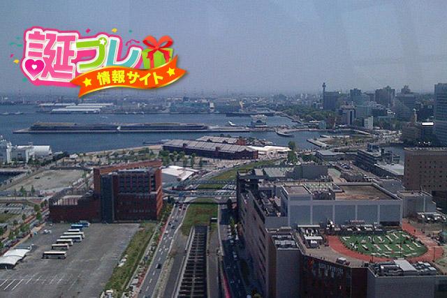 観覧車からの風景の画像