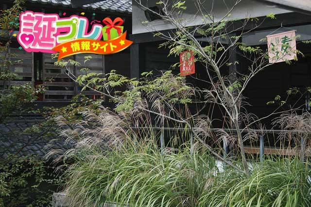 箱根温泉の画像